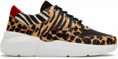 Lucy Pony | Leopard Trainers